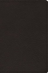 ESV Preaching Bible, Verse-by-Verse Edition--goatskin leather, black