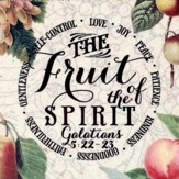 The Fruit Of the Spirit Magnet