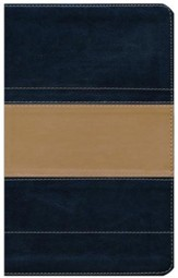 KJV Study Bible - Illustrated Edition, Imitation Leather,  Dark Blue & Tan - Slightly Imperfect
