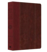 KJV Study Bible, Large Print, Leather, imitation