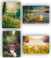 Tony Evans, Birthday Cards, Box of 12