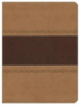 HCSB Apologetics Study Bible, Brown & Tan Simulated Leather