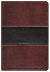 HCSB UltraThin Reference Bible, Mahogany LeatherTouch, Indexed