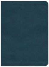 KJV Study Bible, Slate Blue LeatherTouch