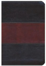 HCSB Compact Ultrathin Bible, Saddlebrown LeatherTouch