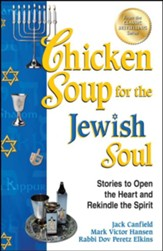 Chicken Soup for the Jewish Soul: 101 Stories to Open the Heart and Rekindle the Spirit