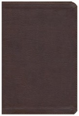 KJV Rainbow Study Bible, Mantova Brown LeatherTouch, Thumb-Indexed