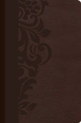 Biblia de estudio para mujeres RVR 1960, simil piel cafe con indice (Study Bible for Women, Brown LeatherTouch with Index)