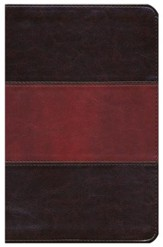 NKJV UltraThin Reference Bible, Saddle Brown LeatherTouch, Thumb-Indexed