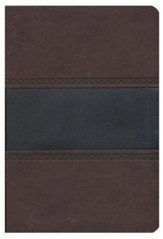 HCSB Giant Print Reference Bible, Brown and Chocolate LeatherTouch