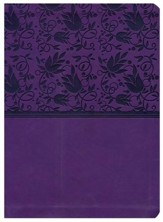HCSB Study Bible--soft leather-look, purple (indexed)