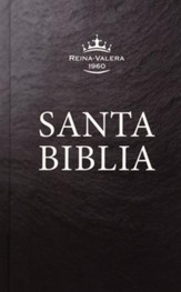 RVR 1960 Spanish Pew Bible--clothbound hardcover, black