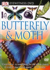 Eyewitness: Butterfly & Moth DVD