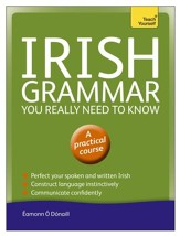 Irish Grammar You Really Need to Know: Teach Yourself / Digital original - eBook