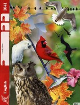 English PACE 1041, Grade 4 (4th Edition)