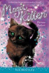 Picture Perfect #13 - eBook