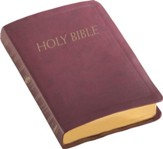 NABRE Catholic Companion Bible, Burgundy Imitation Leather