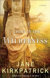 A Light in the Wilderness - eBook