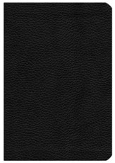 NIV Pitt Minion Reference Bible, Calf Split Leather, black