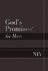 God's Promises for Men NIV: New International Version - eBook
