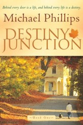 Destiny Junction: Behind Every Door is a Life, and Behind Every Life is a Destiny - eBook