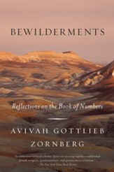 Bewilderments: Reflections on the Book of Numbers - eBook