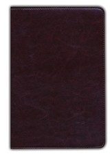 NIV Waterproof Bible, Burgundy Imitation Leather - Slightly Imperfect