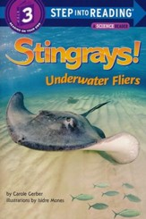 Stingrays! Underwater Fliers - eBook