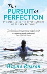 The Pursuit of Perfection: By Experiencing the Seven Baptisms of the New Testament - eBook