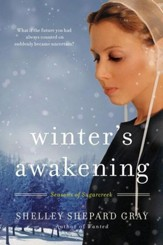 Winter's Awakening: Seasons of Sugarcreek, Book One - eBook