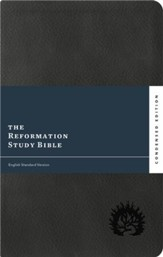 ESV Reformation Study Bible, 2017 Condensed Edition, Soft Leather-look, Charcoal