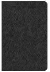 ESV Reformation Study Bible, 2017 Condensed Edition, Black Genuine Leather with Silver Gilding