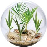 Beach In A Bowl Terrarium