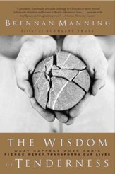 The Wisdom of Tenderness: What happens when God's firece mercy transforms our lives - eBook