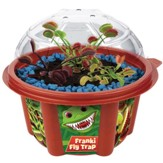 Frankie Fly Trap Mini Dome