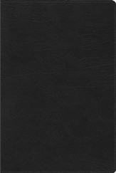 RVR 1960 Biblia de Estudio Arco Iris, negro imitación piel (Rainbow Study Bible, Black Imitation Leather)