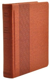 KJV Expressions Bible, Brown Imitation Leather over Board Hardcover