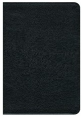 NRSV Premium Bible--bonded leather, black