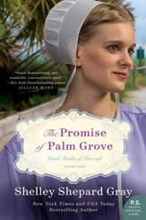 The Promise of Palm Grove: Amish Brides of Pinecraft, Book One - eBook