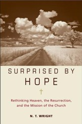 Surprised by Hope - eBook
