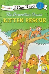 The Berenstain Bears' Kitten Rescue  - Slightly Imperfect