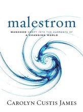Malestrom: Manhood Swept into the Currents of a Changing World - eBook