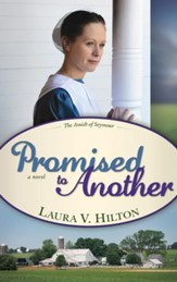Promised To Another, Amish of Seymour Series #3