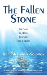 The Fallen Stone: Purpose is often found at rock bottom - eBook