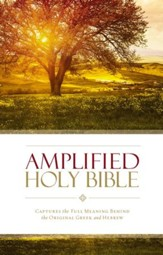 Amplified Holy Bible: Captures the Full Meaning Behind the Original Greek and Hebrew - eBook