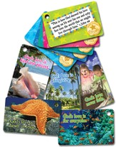 VBS 2014 SonTreasure Island- Connection Cards: 25 Pack