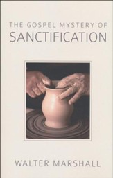 The Gospel Mystery of Sanctification [Paperback]
