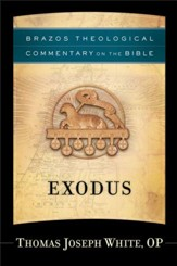 Exodus (Brazos Theological Commentary on the Bible) - eBook