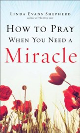 How to Pray When You Need a Miracle - eBook