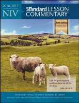 NIV Standard Lesson Commentary 2016-2017, softcover - Slightly Imperfect